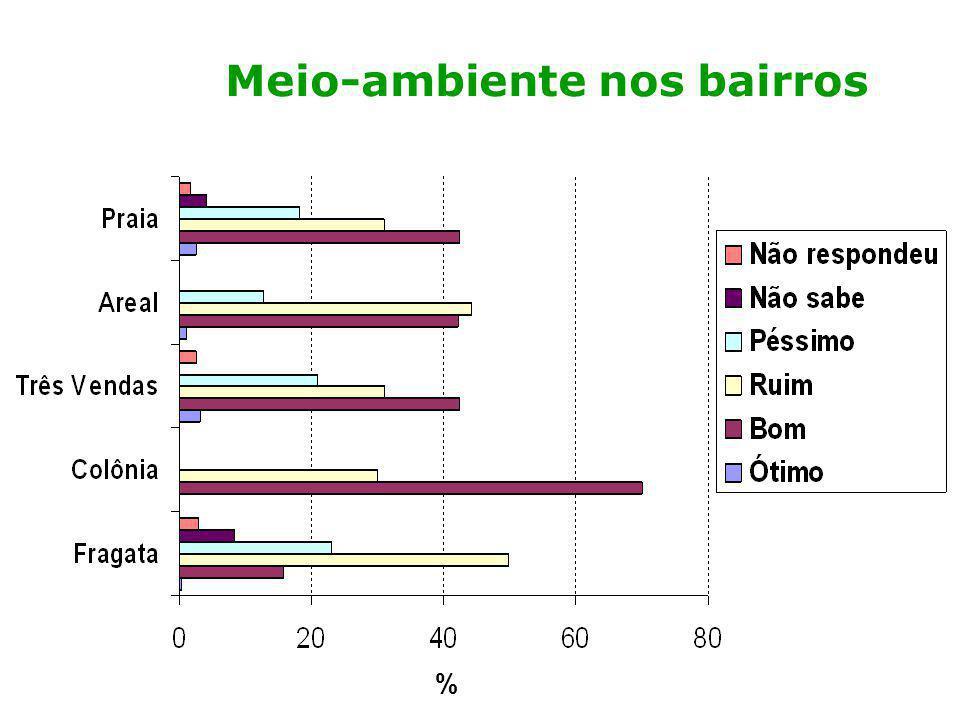 Análise preliminar: meio-ambiente Metade das pessoas percebe o meio ambiente em que vive de forma negativa; As percepções mais negativa são dos moradores do Dunas, Bom Jesus e Gotuzzo; As percepções mais positivas (2/3 das pessoas) são da Tablada, Areal fundos, Laranjal e Colônia;