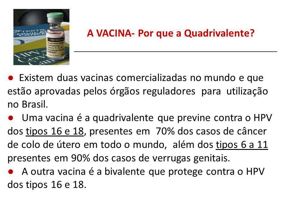 Existem duas vacinas comercializadas no mundo e que estão aprovadas pelos órgãos reguladores para utilização no Brasil. Uma vacina é a quadrivalente q