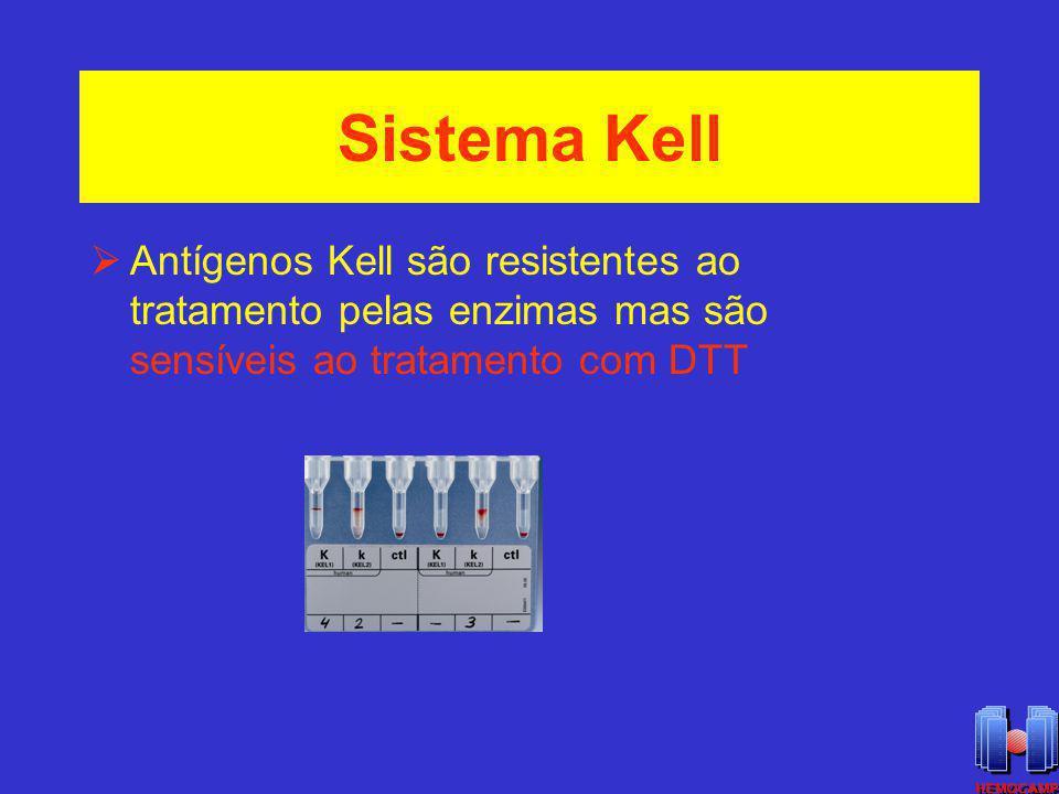 Sistema Kell Antígenos Kell são resistentes ao tratamento pelas enzimas mas são sensíveis ao tratamento com DTT
