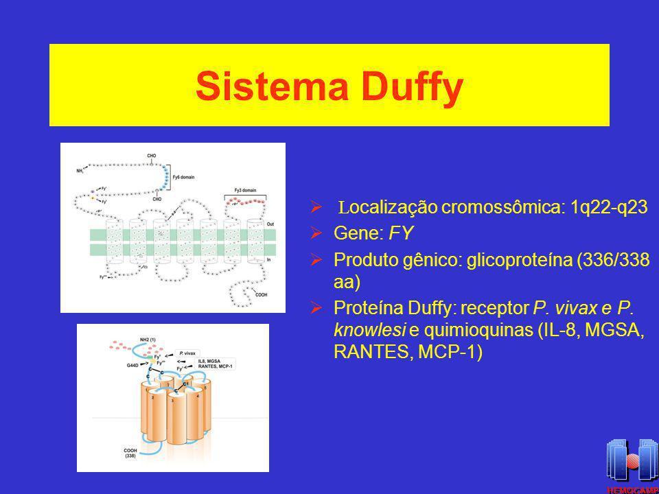 Sistema Duffy L ocalização cromossômica: 1q22-q23 Gene: FY Produto gênico: glicoproteína (336/338 aa) Proteína Duffy: receptor P. vivax e P. knowlesi