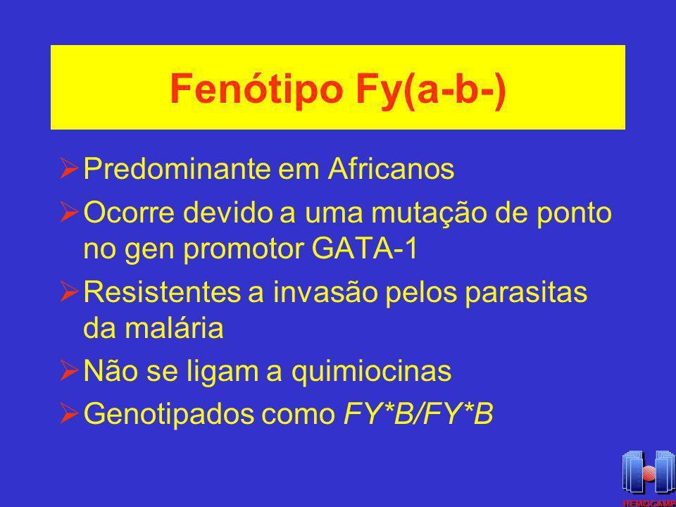 Fenótipo Fy(a-b-) Predominante em Africanos Ocorre devido a uma mutação de ponto no gen promotor GATA-1 Resistentes a invasão pelos parasitas da malár