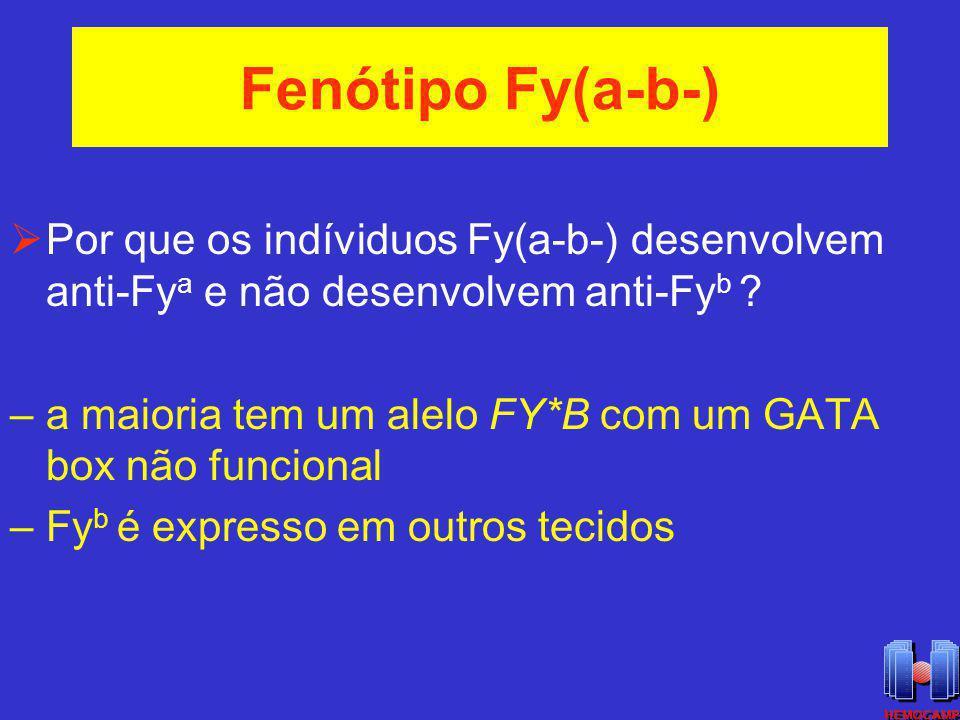 Fenótipo Fy(a-b-) Por que os indíviduos Fy(a-b-) desenvolvem anti-Fy a e não desenvolvem anti-Fy b ? –a maioria tem um alelo FY*B com um GATA box não