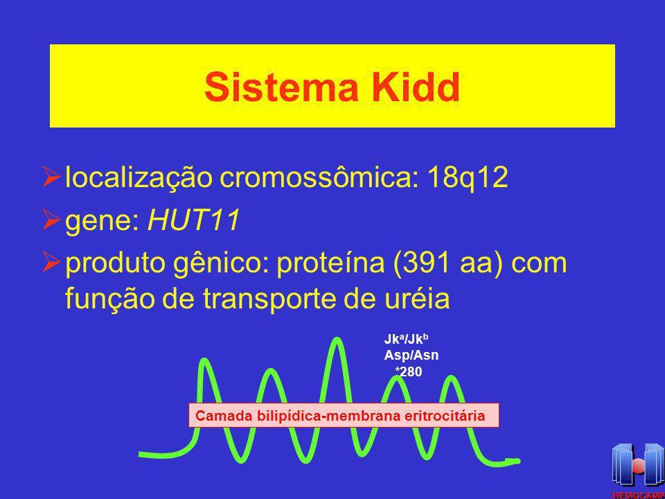 Sistema Kidd localização cromossômica: 18q12 gene: HUT11 produto gênico: proteína (391 aa) com função de transporte de uréia Camada bilipídica-membran