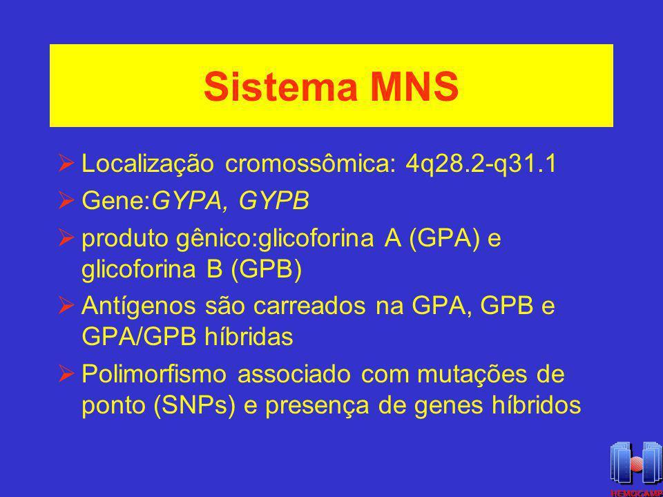Sistema MNS Localização cromossômica: 4q28.2-q31.1 Gene:GYPA, GYPB produto gênico:glicoforina A (GPA) e glicoforina B (GPB) Antígenos são carreados na