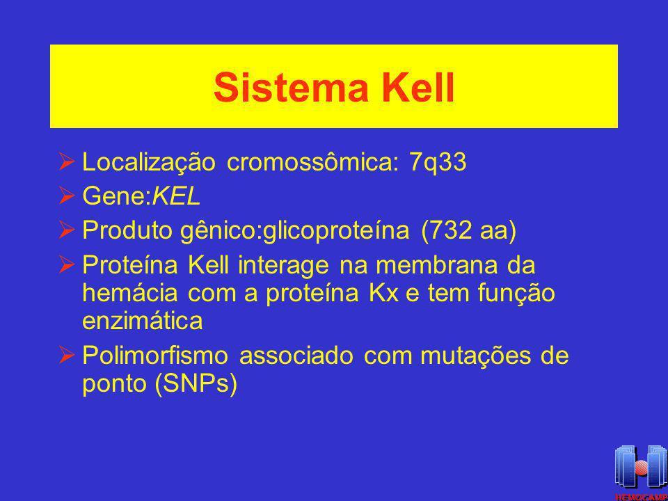 Sistema Kell Localização cromossômica: 7q33 Gene:KEL Produto gênico:glicoproteína (732 aa) Proteína Kell interage na membrana da hemácia com a proteín