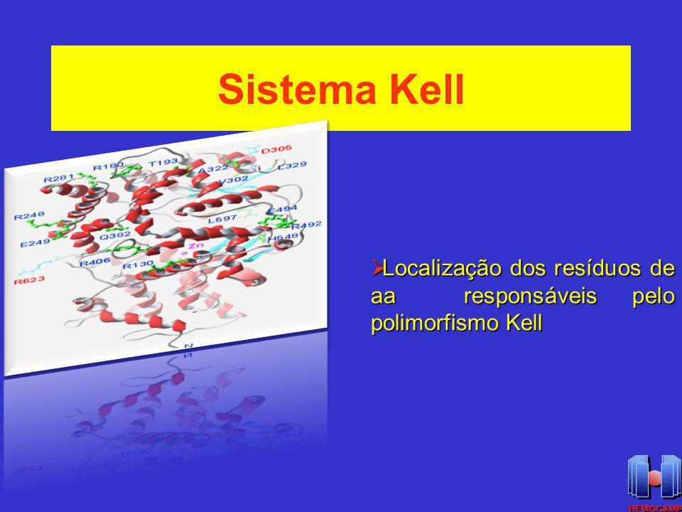 Sistemas Kell e Kx Forte associação entre as glicoproteínas Kell e Kx na membrana da hemácia Ausência ou redução da glicoproteína Kell resulta na elevação de Kx Fenótipo McLeod: perda de Kx enfraquecimento da expressão dos antígenos Kell