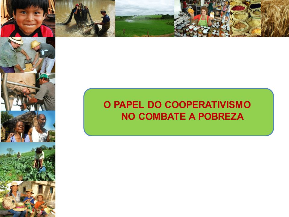 Por reconhecer o papel das cooperativas na construção de um mundo melhor.
