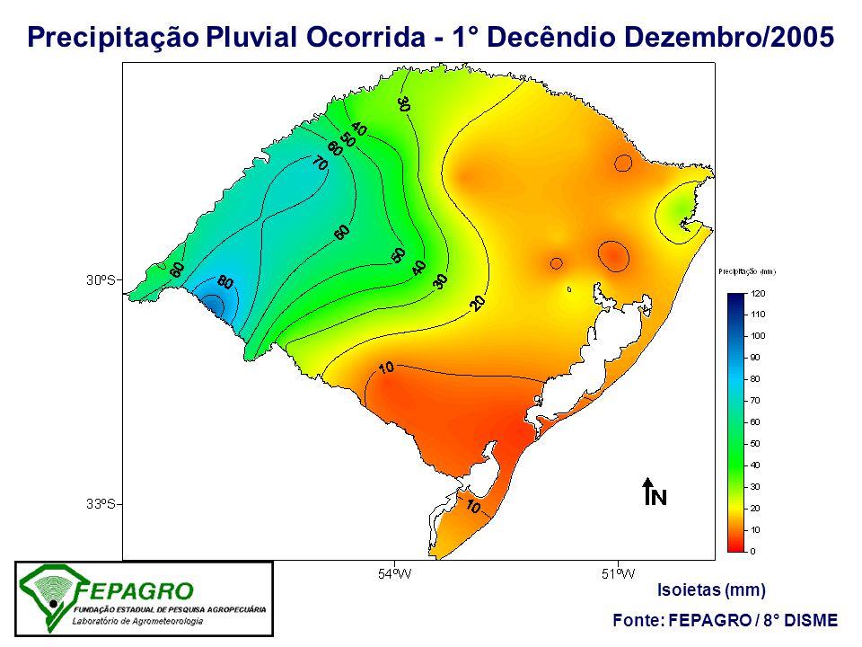 -100 -80 -60 -40 -20 0 20 40 60 80 100 Precipitação - Desvio da Normal (%) - Dezembro/2005
