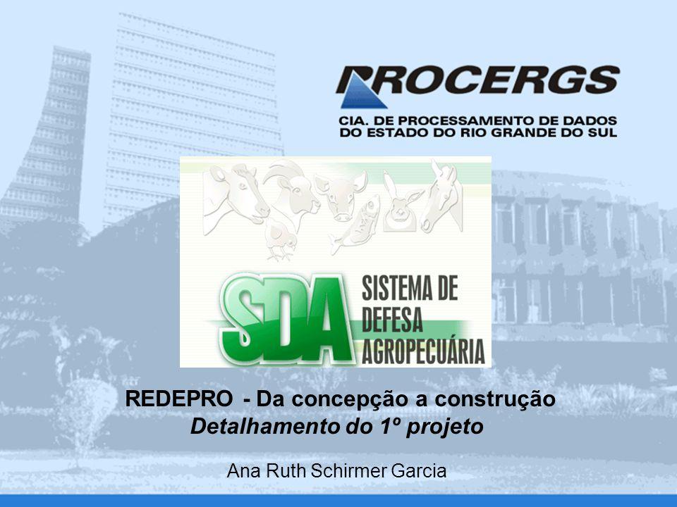 REDEPRO - Da concepção a construção Detalhamento do 1º projeto Ana Ruth Schirmer Garcia