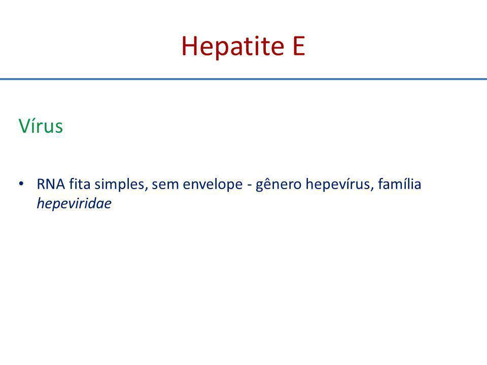 Hepatite E Diagnóstico Muito semelhante às manifestações da hepatite A aguda - pródromos e laboratório Apenas testes sorológicos são capazes de diferenciar Tempo de incubação mais longo Na gestação além de poder levar a transmissão vertical pode complicar a gestação com aborto ou feto natimorto