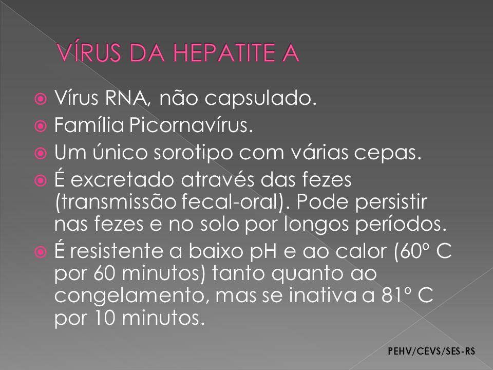 Vírus RNA, não capsulado. Família Picornavírus. Um único sorotipo com várias cepas. É excretado através das fezes (transmissão fecal-oral). Pode persi