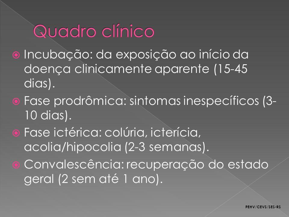 Incubação: da exposição ao início da doença clinicamente aparente (15-45 dias). Fase prodrômica: sintomas inespecíficos (3- 10 dias). Fase ictérica: c