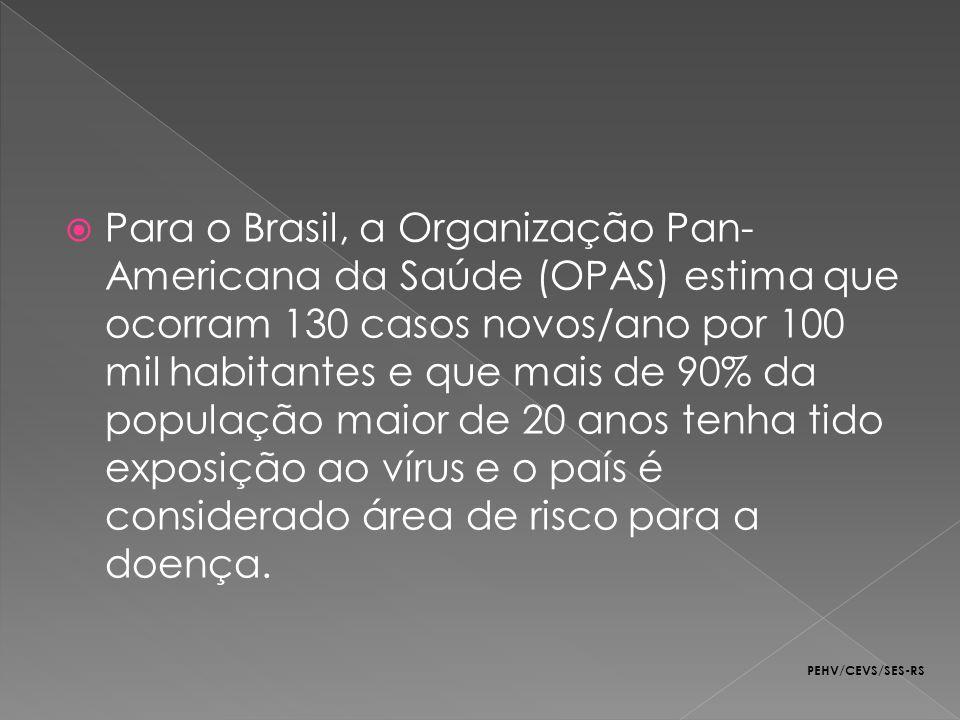 Para o Brasil, a Organização Pan- Americana da Saúde (OPAS) estima que ocorram 130 casos novos/ano por 100 mil habitantes e que mais de 90% da populaç