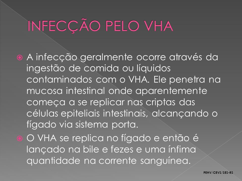A infecção geralmente ocorre através da ingestão de comida ou líquidos contaminados com o VHA. Ele penetra na mucosa intestinal onde aparentemente com