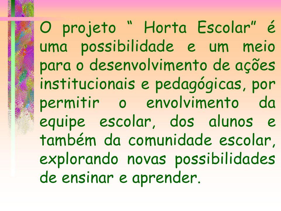 O projeto Horta Escolar é uma possibilidade e um meio para o desenvolvimento de ações institucionais e pedagógicas, por permitir o envolvimento da equ