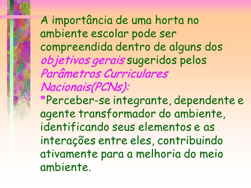 objetivos gerais Parâmetros Curriculares Nacionais(PCNs): A importância de uma horta no ambiente escolar pode ser compreendida dentro de alguns dos ob