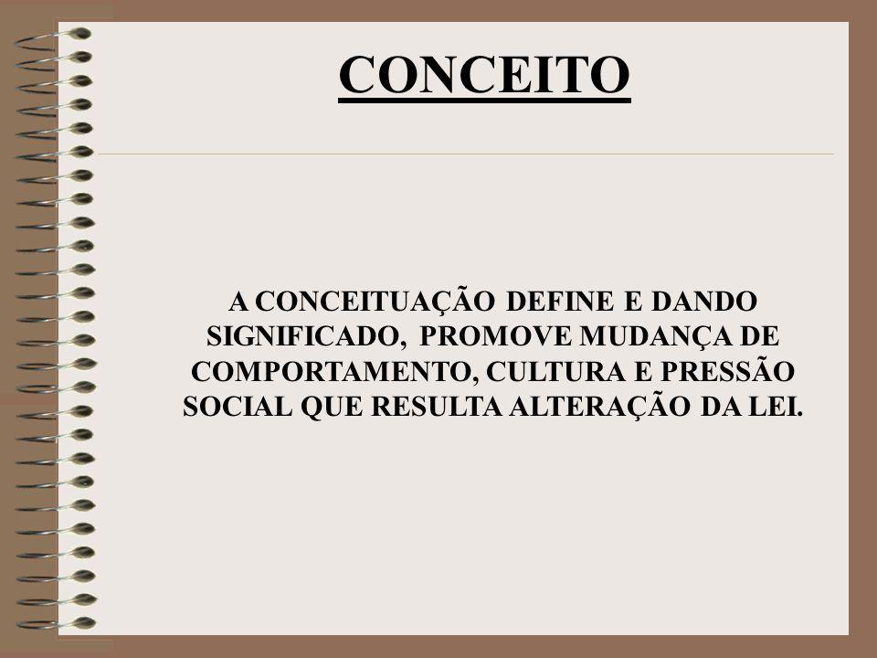 A CONCEITUAÇÃO DEFINE E DANDO SIGNIFICADO, PROMOVE MUDANÇA DE COMPORTAMENTO, CULTURA E PRESSÃO SOCIAL QUE RESULTA ALTERAÇÃO DA LEI.