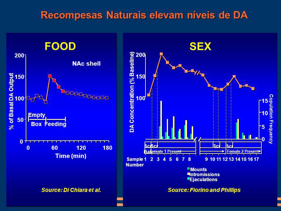 0 50 100 150 200 060120180 Time (min) % of Basal DA Output NAc shell Empty BoxFeeding Source: Di Chiara et al. FOOD Recompesas Naturais elevam níveis