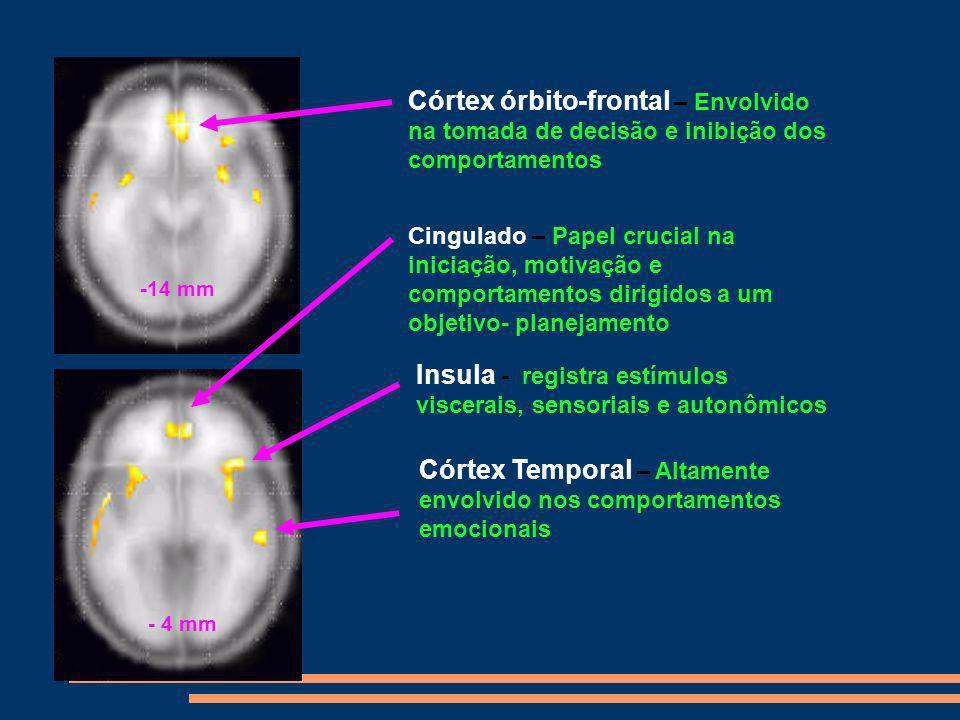 Cocaína no cérebro após o uso da cocaína Normal Cocaine Abuser (10 days) Cocaine Abuser (100 days) Photo courtesy of Nora Volkow, Ph.D.
