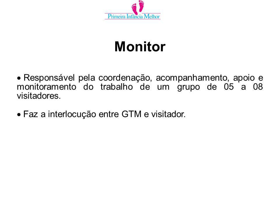 Responsável pela coordenação, acompanhamento, apoio e monitoramento do trabalho de um grupo de 05 a 08 visitadores.