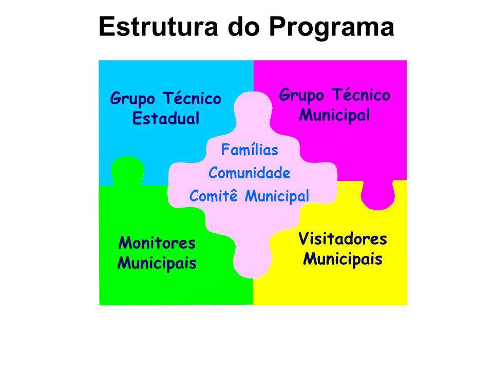 Famílias Comunidade Comitê Municipal Grupo Técnico Estadual Grupo Técnico Municipal Monitores Municipais Visitadores Municipais Estrutura do Programa