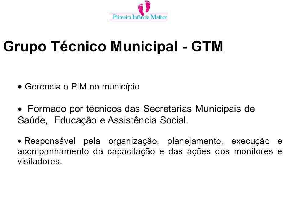 Grupo Técnico Municipal - GTM Gerencia o PIM no município Formado por técnicos das Secretarias Municipais de Saúde, Educação e Assistência Social.