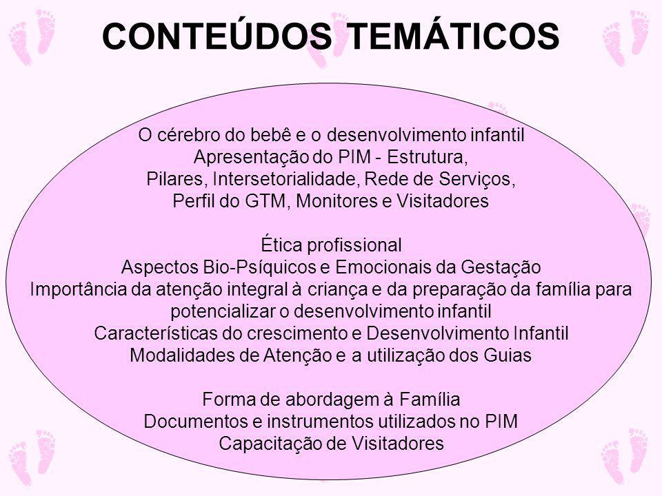 CONTEÚDOS TEMÁTICOS O cérebro do bebê e o desenvolvimento infantil Apresentação do PIM - Estrutura, Pilares, Intersetorialidade, Rede de Serviços, Perfil do GTM, Monitores e Visitadores Ética profissional Aspectos Bio-Psíquicos e Emocionais da Gestação Importância da atenção integral à criança e da preparação da família para potencializar o desenvolvimento infantil Características do crescimento e Desenvolvimento Infantil Modalidades de Atenção e a utilização dos Guias Forma de abordagem à Família Documentos e instrumentos utilizados no PIM Capacitação de Visitadores