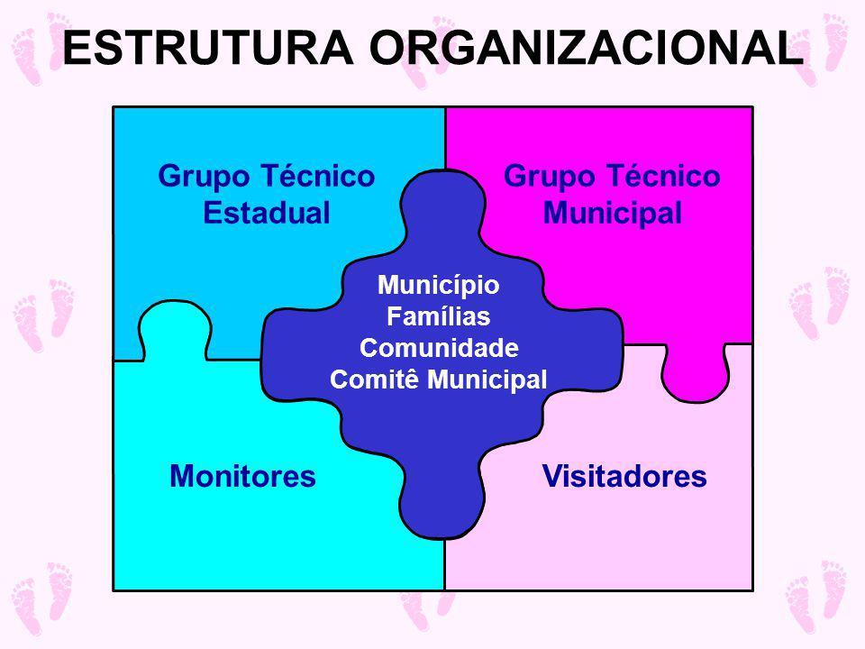 Grupo Técnico Estadual Grupo Técnico Municipal MonitoresVisitadores Município Famílias Comunidade Comitê Municipal ESTRUTURA ORGANIZACIONAL