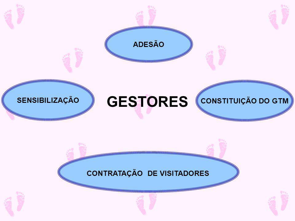 ÁREA SELECIONADA CENSO MAPEAMENTO Capacitação Seleção Habilitação VISITADORES