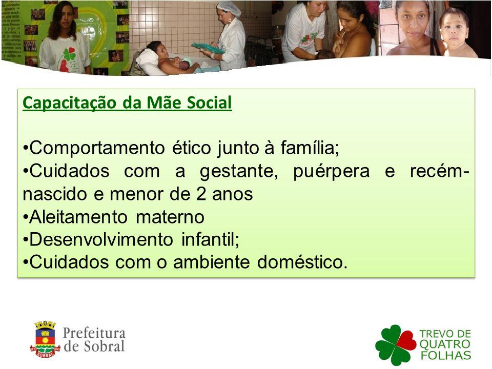 Capacitação da Mãe Social Comportamento ético junto à família; Cuidados com a gestante, puérpera e recém- nascido e menor de 2 anos Aleitamento matern