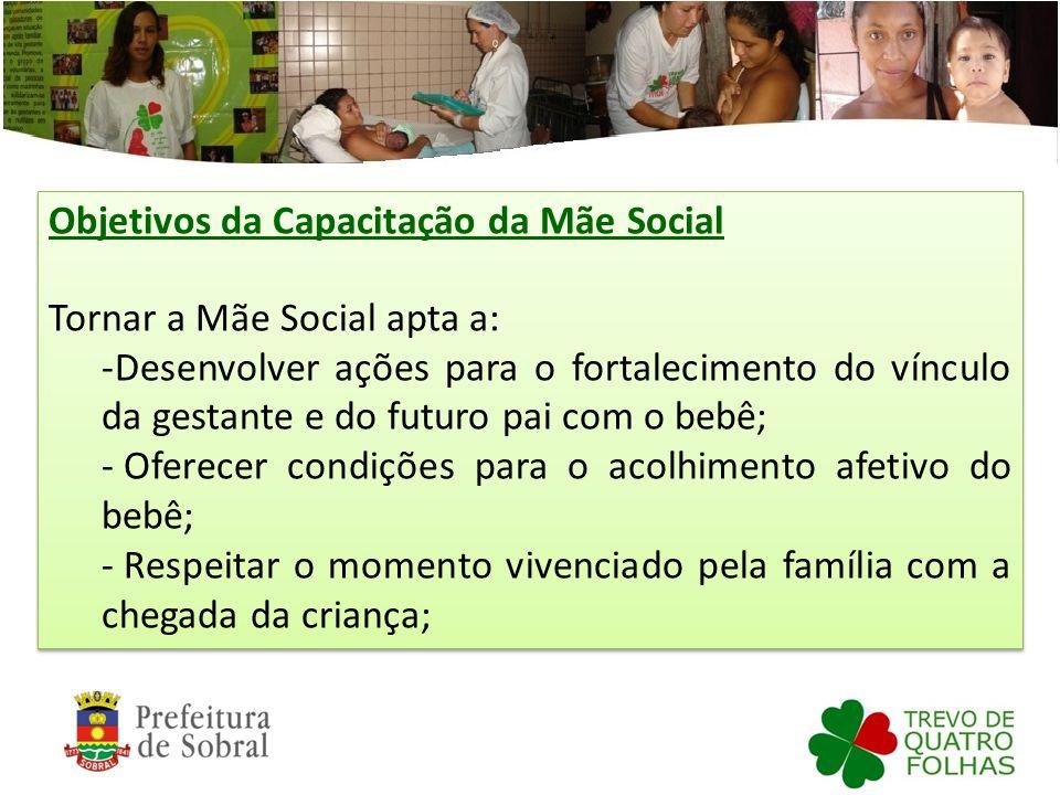 Objetivos da Capacitação da Mãe Social Tornar a Mãe Social apta a: -Desenvolver ações para o fortalecimento do vínculo da gestante e do futuro pai com