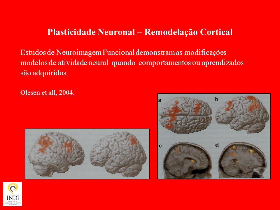 Plasticidade Neuronal – Remodelação Cortical Estudos de Neuroimagem Funcional demonstram as modificações modelos de atividade neural quando comportame
