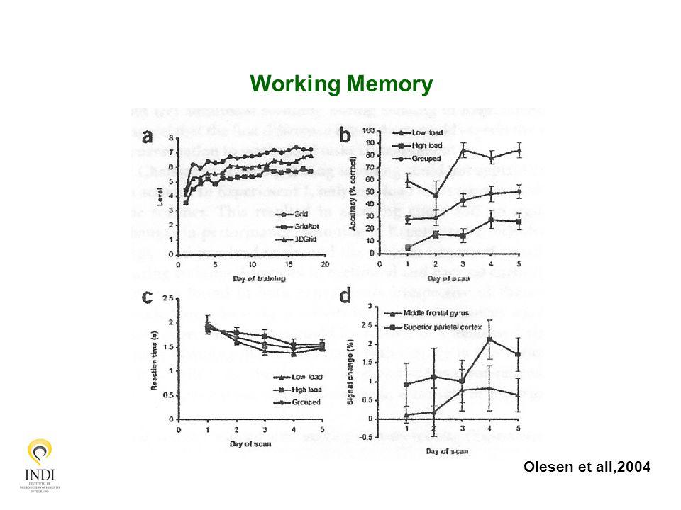 Working Memory Olesen et all,2004