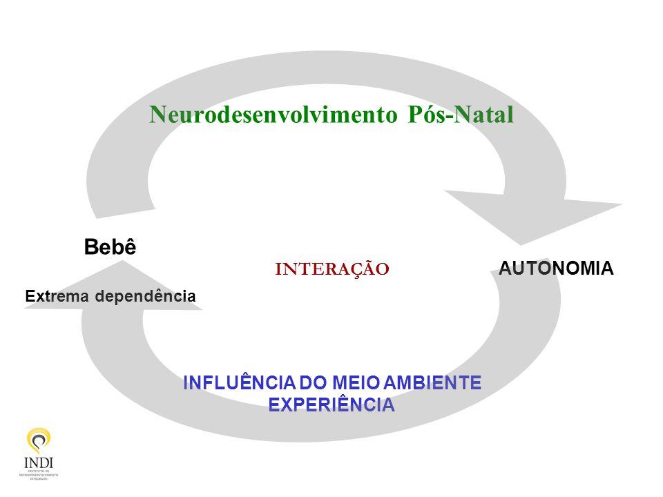 Neurodesenvolvimento Pós-Natal Bebê Extrema dependência AUTONOMIA INFLUÊNCIA DO MEIO AMBIENTE EXPERIÊNCIA INTERAÇÃO