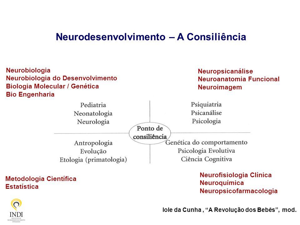 Neurodesenvolvimento – A Consiliência Neurobiologia Neurobiologia do Desenvolvimento Biologia Molecular / Genética Bio Engenharia Neuropsicanálise Neu