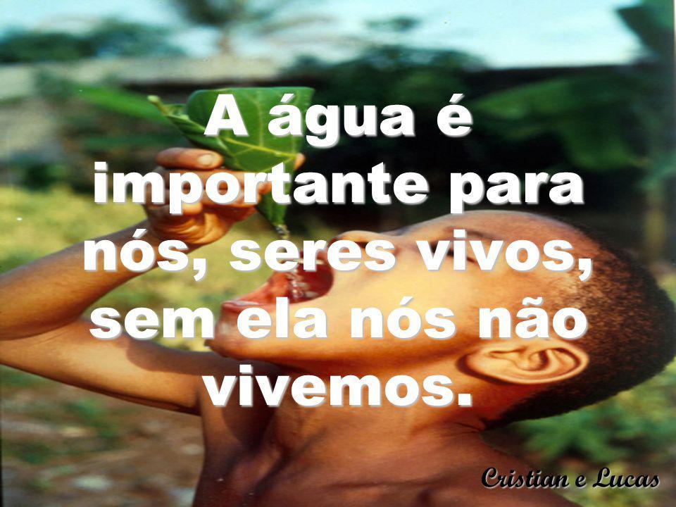A água é importante para nós, seres vivos, sem ela nós não vivemos. Cristian e Lucas