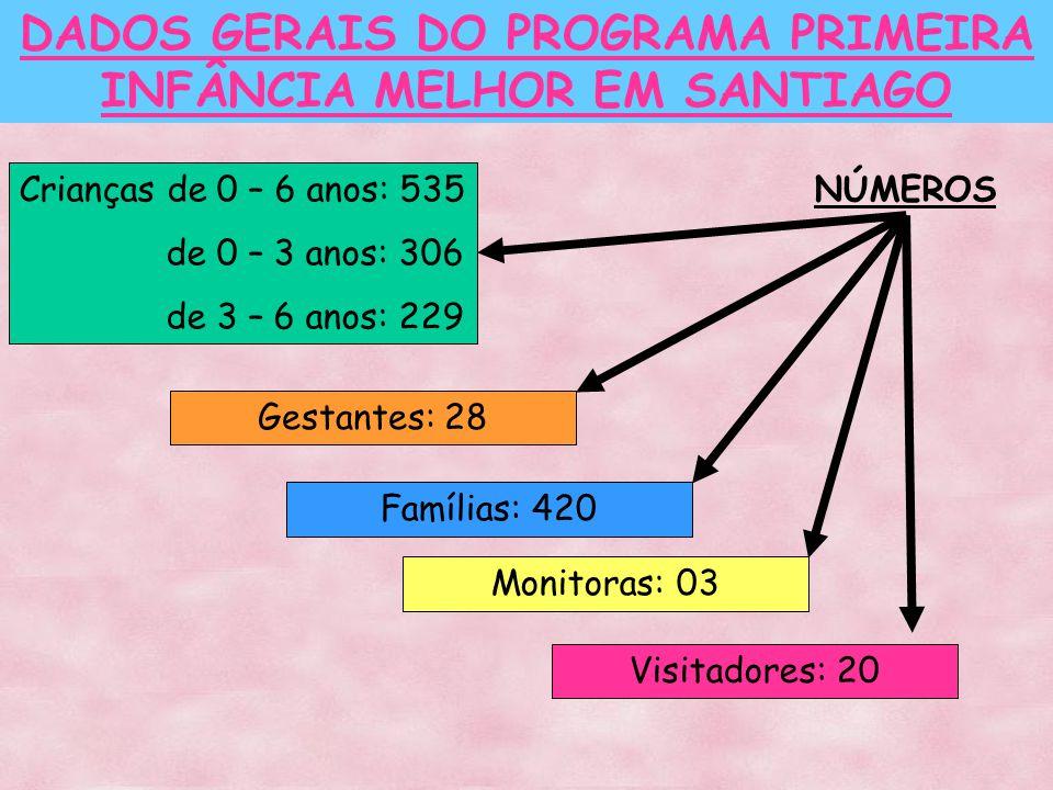 DADOS GERAIS DO PROGRAMA PRIMEIRA INFÂNCIA MELHOR EM SANTIAGO Crianças de 0 – 6 anos: 535 de 0 – 3 anos: 306 de 3 – 6 anos: 229 Gestantes: 28 Famílias: 420 Monitoras: 03 Visitadores: 20 NÚMEROS