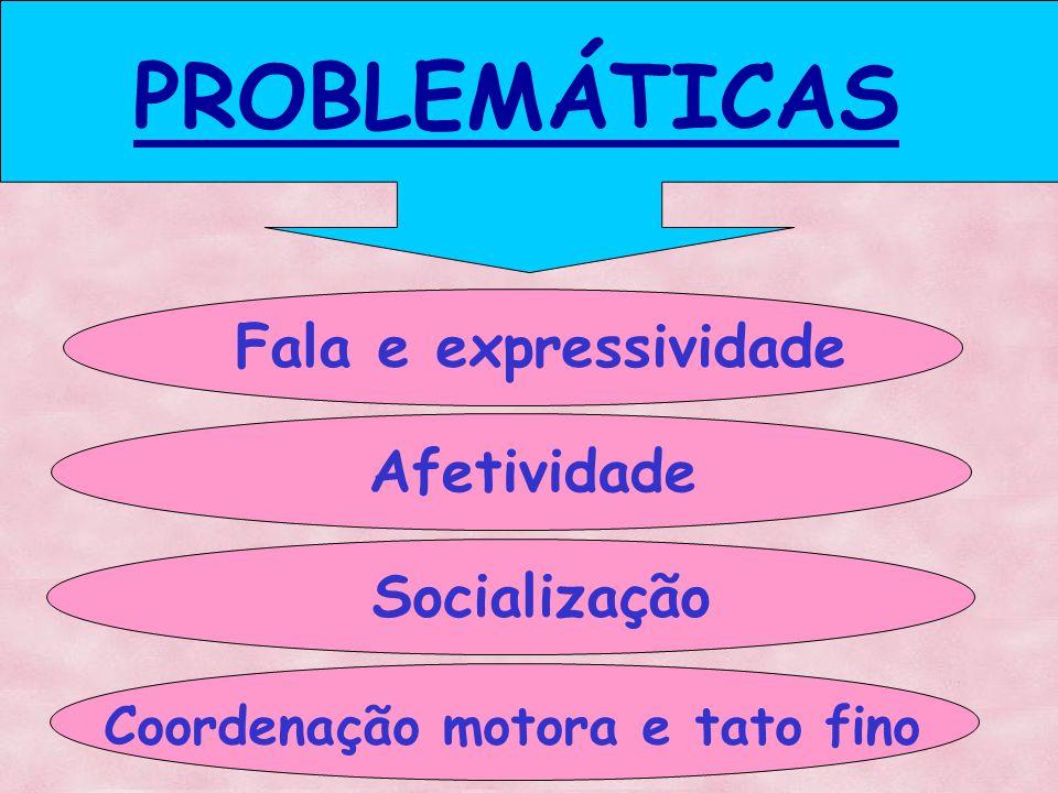 PROBLEMÁTICAS Fala e expressividade Afetividade Socialização Coordenação motora e tato fino