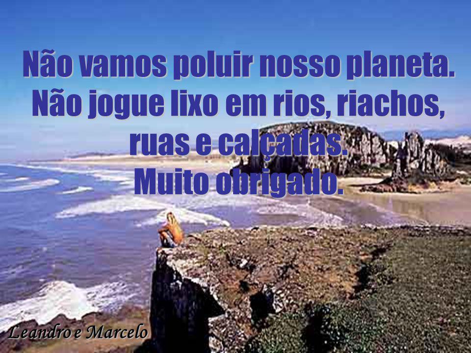 Não vamos poluir nosso planeta. Não jogue lixo em rios, riachos, ruas e calçadas. Muito obrigado. Leandro e Marcelo