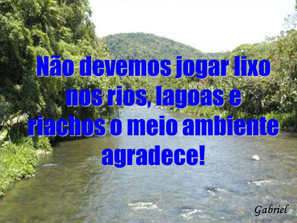 Não devemos jogar lixo nos rios, lagoas e riachos o meio ambiente agradece! Gabriel