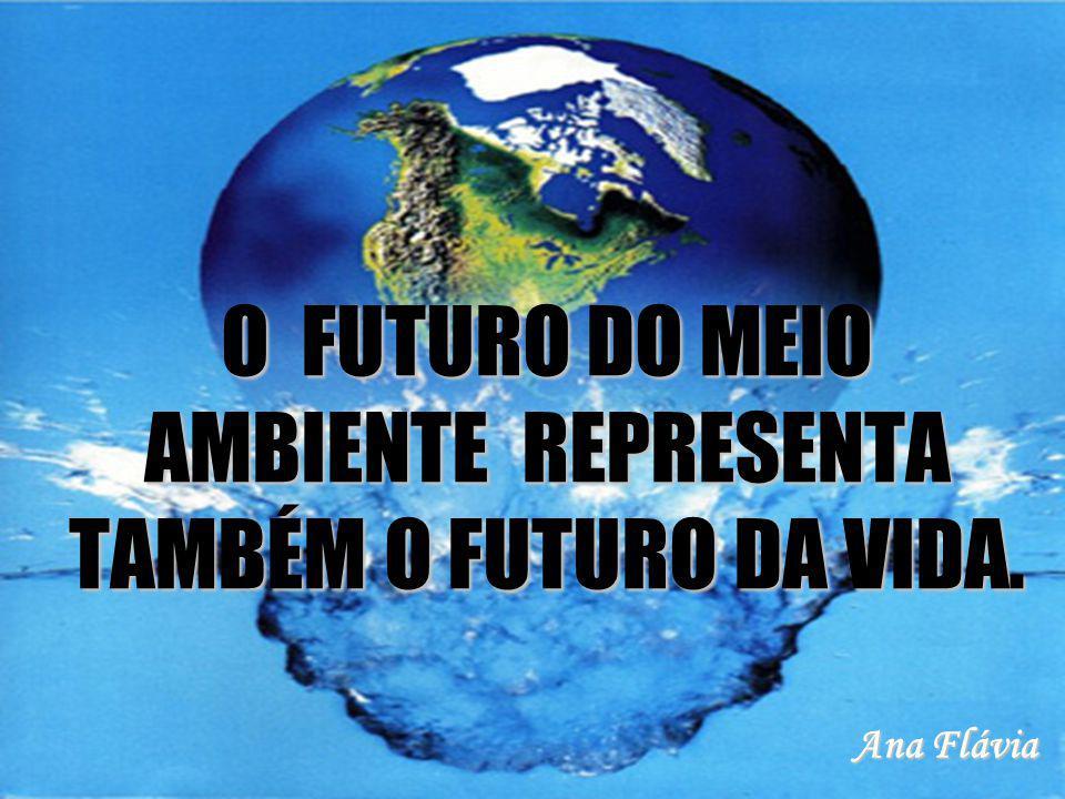 O FUTURO DO MEIO AMBIENTE REPRESENTA TAMBÉM O FUTURO DA VIDA. Ana Flávia