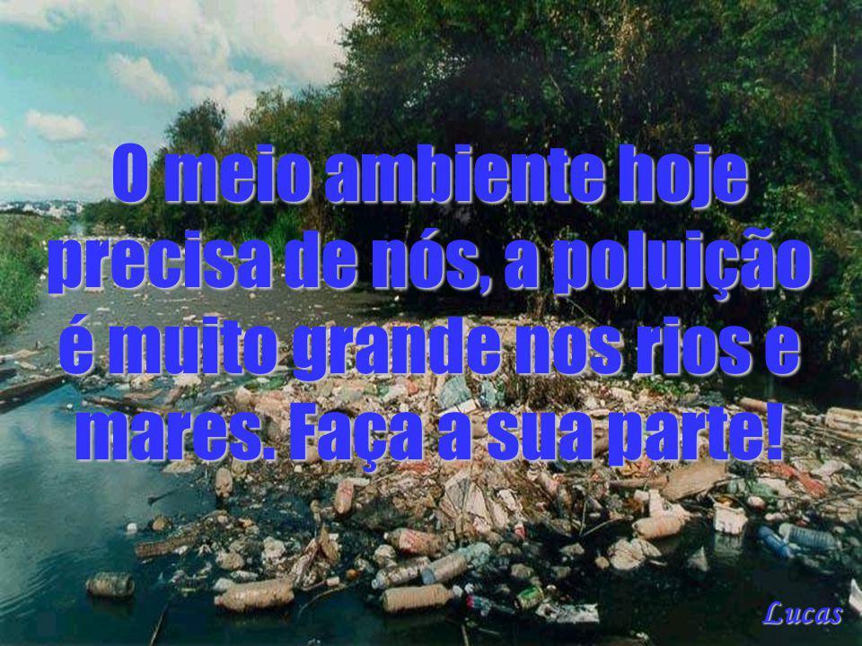 O meio ambiente hoje precisa de nós, a poluição é muito grande nos rios e mares. Faça a sua parte! Lucas