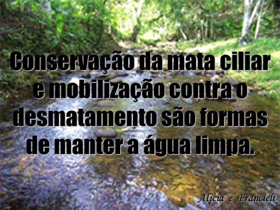 Conservação da mata ciliar e mobilização contra o desmatamento são formas de manter a água limpa. Alicia e Francieli