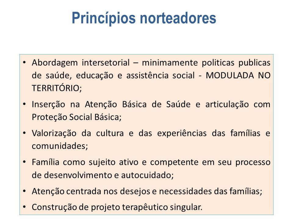 Princípios norteadores Abordagem intersetorial – minimamente politicas publicas de saúde, educação e assistência social - MODULADA NO TERRITÓRIO; Inse