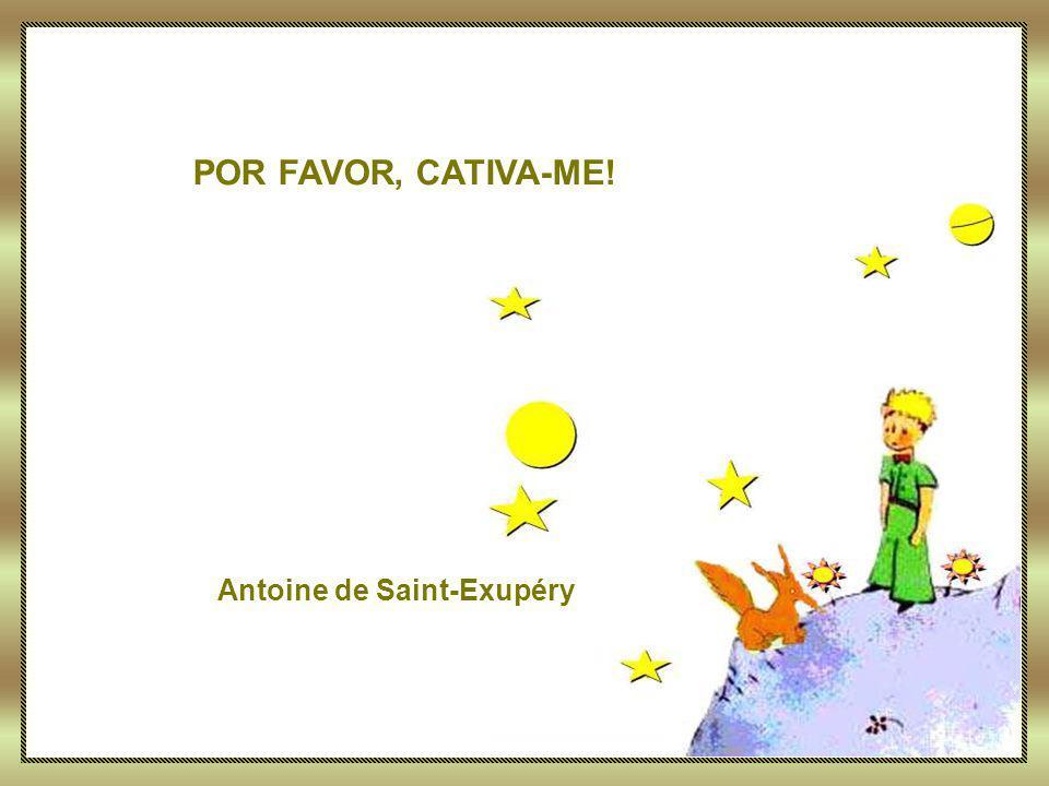 Avançar Texto: SAINT-EXUPÉRY, Antoine de.Por Favor, Cativa-me [Título atribuído] In:.