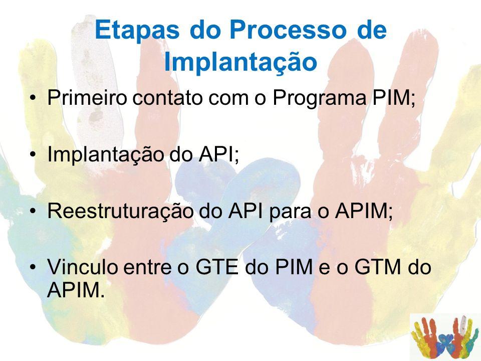 Etapas do Processo de Implantação Primeiro contato com o Programa PIM; Implantação do API; Reestruturação do API para o APIM; Vinculo entre o GTE do P