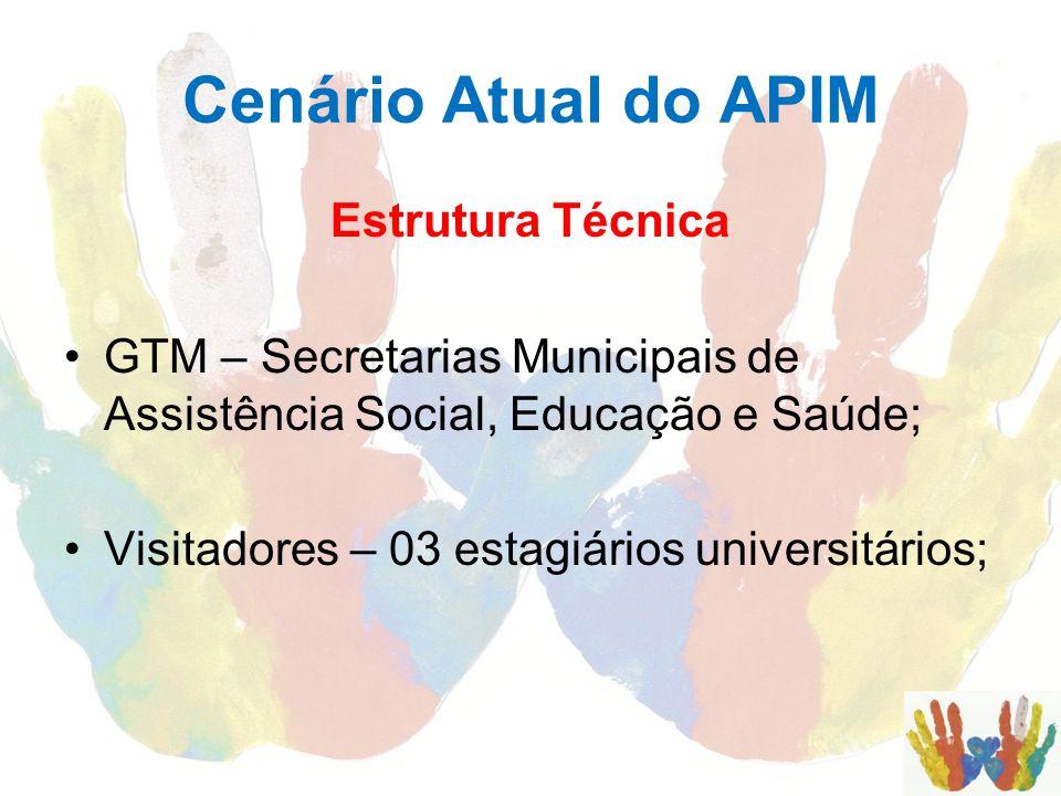 Cenário Atual do APIM Estrutura Técnica GTM – Secretarias Municipais de Assistência Social, Educação e Saúde; Visitadores – 03 estagiários universitár