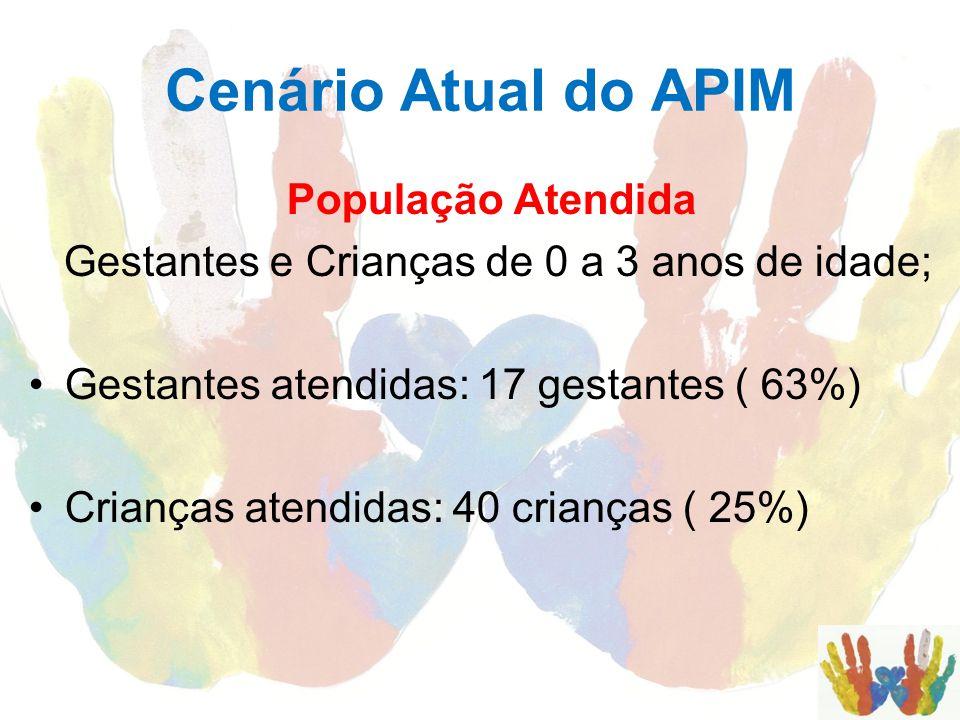 Cenário Atual do APIM População Atendida Gestantes e Crianças de 0 a 3 anos de idade; Gestantes atendidas: 17 gestantes ( 63%) Crianças atendidas: 40
