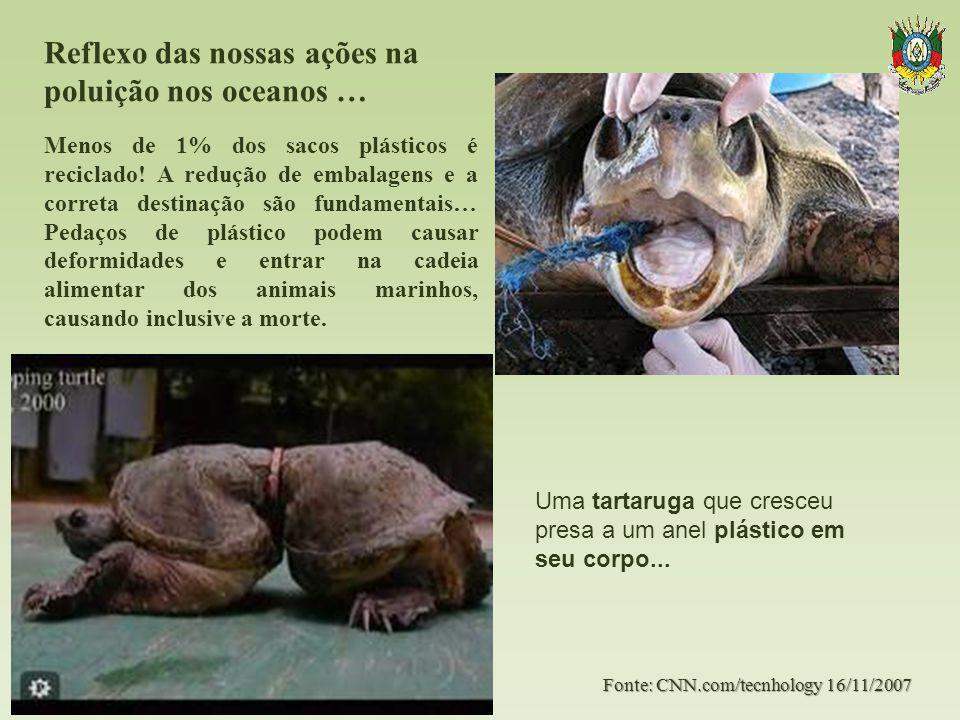 Reflexo das nossas ações na poluição nos oceanos …. Fonte: CNN.com/tecnhology 16/11/2007 Menos de 1% dos sacos plásticos é reciclado! A redução de emb