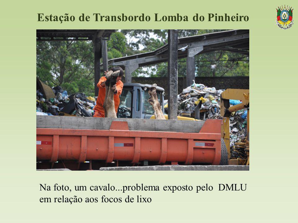 Estação de Transbordo Lomba do Pinheiro Na foto, um cavalo...problema exposto pelo DMLU em relação aos focos de lixo